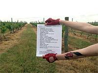 Setlist Hunter Valley 2014